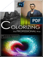 COLORIZING the Professional Way - Brian