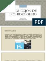 Producción de Biohidrógeno