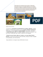 Animales Anfibios