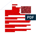 Componentes de La Sangre