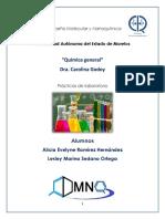 Prácticas Química 2-Manual Practicas