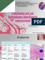 Endocrino Suprranenales