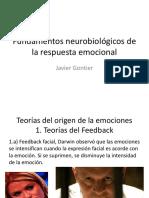 emociones NEUROCIENCIA