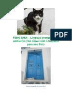 Consultor Metafísico - FENG SHUI (Estudos) - Rafael Ramos