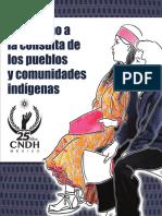 CNDH-El derecho de los pueblos y comunidades indígenas a la consulta