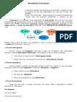 ENTENDENDO PONTUAÇÃO 6 ano.doc