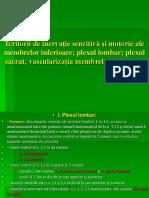 Curs PP Plex Lombar Sacrat
