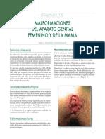 vMalformaciones Del Aparato Genital Femenino y de La Mama - Copia