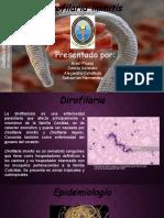 Dilofirariasis