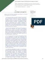 Principios Generales Del Paradigma Sociocognitivo Principios Generales Del Paradigma Sociocognitivo