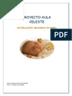 Estimulación sensorial en bebés.pdf
