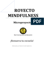 Micro Mindfulness PDF