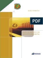 EIA - Modelo.pdf