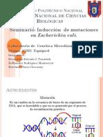 Mutagenesis Terminado