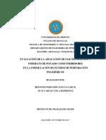 PPROYETO.docx