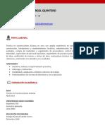CV Nina Vergel.pdf