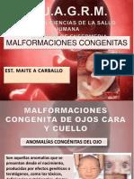 colocacion fetal.pptx