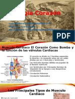 Fisiologia Corazon Por Luis Heim