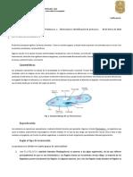 Practica 1. Observación e identificación de protozoarios