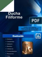 9 Ducha-D Filiforme en Hidroterapia