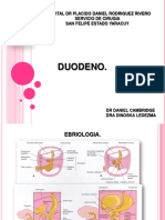 Duodeno Pancreas