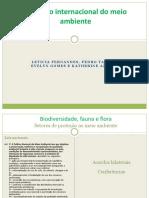 Biodiversidade, Fauna e Flora (Esquema)