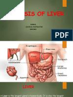 cirrhosisofliver-171214041428.pdf