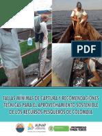 2013 Sepec Cartilla - Tallas Minimas_digital - Referenciada v3 (2)_2013