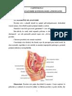 218586613-Neoplasm-Prostata.doc