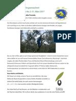 Newsletter2_Mar17_De