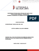 defensa final de caso de estudio tecnologia del gas andrea final.pdf