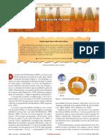 A QUIMICA DA CERVEJA.pdf