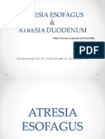 Atresia Esofagus Duodenum