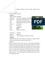Fitokimia Prak 5