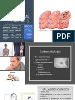 Sindromes Pleuropulmonares Semio