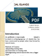 Important Full Report Ppt for Pslam Island