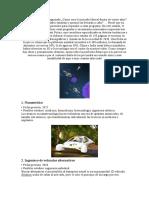 Profesiones del Futuro.doc