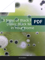 Signs of Black Fungus in Your Home