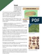 Cultura_de_Hallstatt.pdf