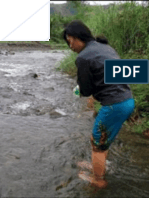 Water quality and risk assessment of tributary rivers in San Fernando, Bukidnon Philippines-JBES 2017