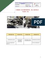 PETS RASTRA.pdf