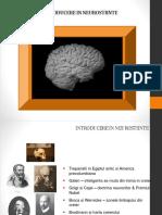 Introducere in Neurostiinte Curs 2 1