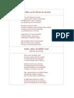 Poema Amor Amor Un Habito Vesti- Garcilaso de La Vega