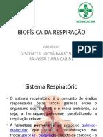 Biofisica Da Respiração