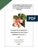 Catálogo Especies de Angiospermas