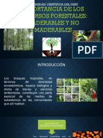 Diapo Importancia Forestal