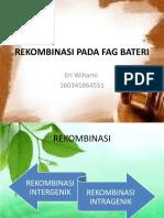 Rekombinasi Pada Fag Bakteri