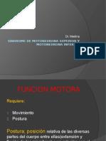 Síndrome de motoneurona superior y motoneurona inferior reparado.pptx
