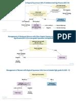 Algorithms Pap Cytology