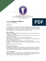 Guia de Pedagogía - Euris